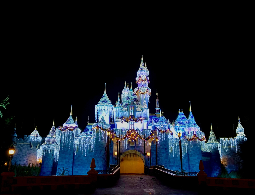 Christmas Themed and lit... Magical Land of Disney. MemExp Blog